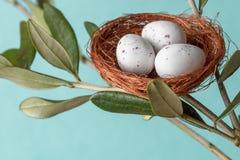 Ovos de chocolate no ninho Fotos de Stock Royalty Free