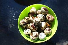 Ovos de codorniz Foto de Stock Royalty Free