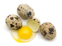 Ovos de codorniz Fotos de Stock
