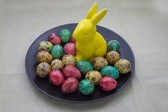 Ovos de codorniz coloridos em uma placa Imagem de Stock
