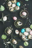 Ovos de codorniz coloridos nos moldes, flores selvagens secadas, folhas Fotos de Stock Royalty Free