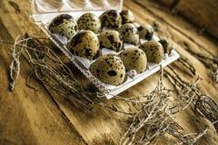 Ovos de codorniz com fundo de madeira fotografia de stock