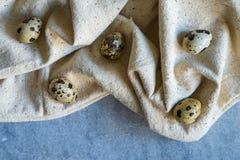 Ovos de codorniz com o pano bege no fundo azul Fotografia de Stock