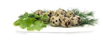 Ovos de codorniz com verdes nos pires brancos fotos de stock