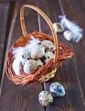 Ovos de codorniz crus Foto de Stock Royalty Free