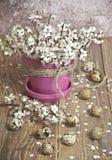 Ovos de codorniz da Páscoa com as flores pequenas brancas foto de stock royalty free