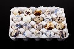 ovos de codorniz da Páscoa da vista superior em uma caixa fotografia de stock royalty free