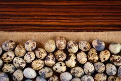 Ovos de codorniz da vista superior Fotografia de Stock