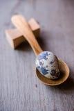 Ovos de codorniz em colheres de madeira Fotos de Stock Royalty Free