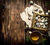 Ovos de codorniz em especiarias da cesta e da terra em um almofariz Foto de Stock