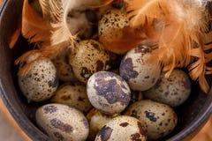 Ovos de codorniz em um close-up preto do copo Muitos ovos de codorniz em um copo Macro Imagens de Stock