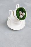 Ovos de codorniz em um copo Imagem de Stock Royalty Free