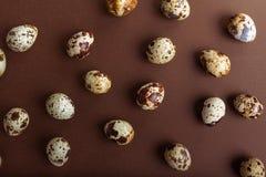 Ovos de codorniz em um fundo marrom Fundo festivo de Easter Configuração lisa fotografia de stock