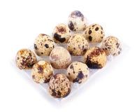 Ovos de codorniz em uma caixa isolada fotografia de stock royalty free