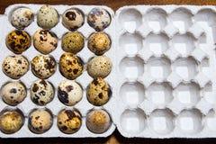 Ovos de codorniz em uma caixa Lugar para seu texto fotografia de stock