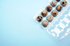 Ovos de codorniz em uma caixa plástica do ovo no fundo azul brilhante fotos de stock royalty free