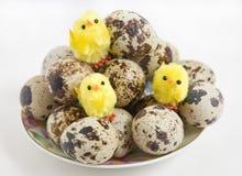 Ovos de codorniz em uma placa Fotografia de Stock Royalty Free