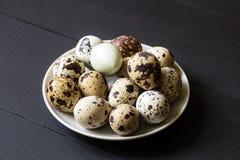 Ovos de codorniz frescos imagens de stock