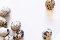 Ovos de codorniz Grupo de ovos de codorniz isolados no fundo branco Foto do close up Fotos de Stock