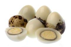 Ovos de codorniz isolados Imagem de Stock