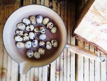 Ovos de codorniz na bandeja do vintage e no assoalho de madeira imagem de stock