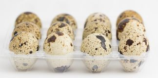 Ovos de codorniz na caixa de ovo, vista lateral, foco na parte dianteira Imagens de Stock Royalty Free