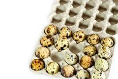 Ovos de codorniz na caixa na tabela Fotografia de Stock