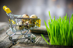 Ovos de codorniz na carta da compra Fotos de Stock Royalty Free