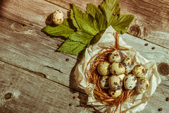 Ovos de codorniz na tabela de madeira Imagens de Stock Royalty Free