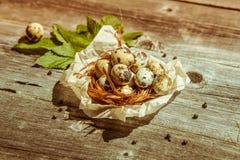 Ovos de codorniz na tabela de madeira Fotos de Stock