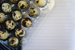 Ovos de codorniz no empacotamento plástico Vista superior imagem de stock royalty free
