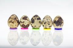 Ovos de codorniz no fundo branco Fotos de Stock
