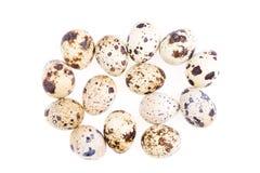 Ovos de codorniz no fundo branco Imagens de Stock