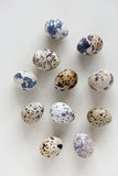 Ovos de codorniz no fundo de pedra claro, vista superior Foto de Stock