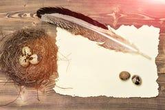Ovos de codorniz no ninho com pena da escrita e papel, easter Fotos de Stock Royalty Free
