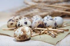 Ovos de codorniz no pano de linho Imagens de Stock