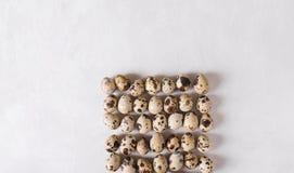Ovos de codorniz Ovos de codorniz na forma de um quadrado em um fundo claro Conceito da foto da Páscoa Imagens de Stock