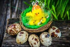 Ovos de codorniz para a Páscoa Fotos de Stock Royalty Free