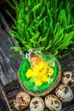 Ovos de codorniz para a Páscoa Imagem de Stock
