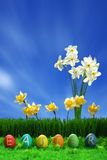 Ovos de Easter coleção e flores Imagem de Stock
