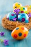 Ovos de Easter coloridos com flores da mola Fotos de Stock