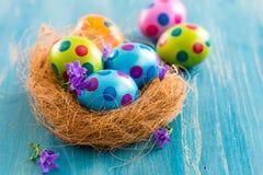 Ovos de Easter coloridos com flores da mola Fotos de Stock Royalty Free