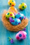 Ovos de Easter coloridos com flores da mola Foto de Stock