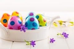 Ovos de Easter coloridos com flores da mola Imagens de Stock
