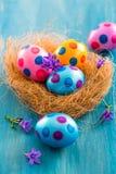 Ovos de Easter coloridos com flores da mola Imagem de Stock Royalty Free