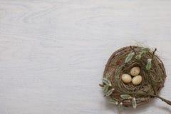 Ovos de Easter coloridos em uma cesta Fotografia de Stock