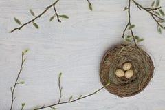 Ovos de Easter coloridos em uma cesta Foto de Stock Royalty Free