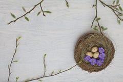 Ovos de Easter coloridos em uma cesta Imagens de Stock Royalty Free
