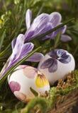 Ovos de Easter com açafrões Imagens de Stock Royalty Free