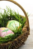 Ovos de Easter com grama verde Fotografia de Stock